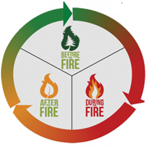 Becoming a Fire Adapted Community